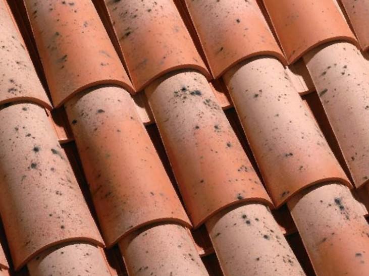 teja ceramica curva collado viejo castilla