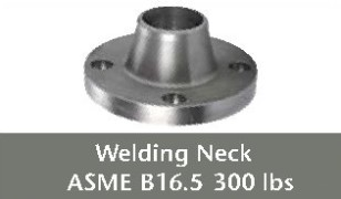 img welding neck 300